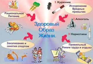 культура здорового образа жизни